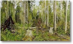 Купить картину Сосновый лес