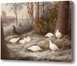 Картина Стая рябчиков на реке