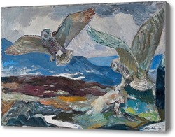 Картина Белые совы