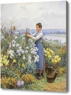 Картина Хризантемы, Найт Даниэль