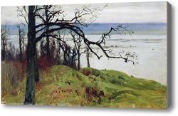 Картина Волга с высокого берега (Сура с высокого берега). 1887