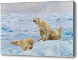 Картина Три полярных медведя
