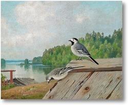 Картина Маленькие птицы на крыше