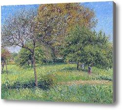 Картина Великое ореховое дерево.Утро, Эраньи