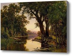 Купить картину Устье реки в Гоулберн.Виктория