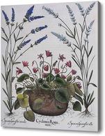 Картина Комнатные и полевые цветы