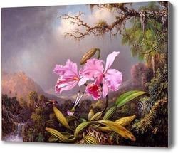 Картина Исследование Орхидеи