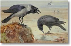 Картина Серая ворона и ворон