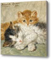 Картина Сонные котята