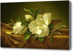 Картина Магнолии на золотой бархатной ткани.Хед Мартин Джонсон