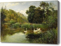 Картина Озеро с лебедями