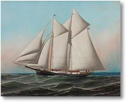 Картина Американская яхта