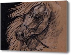 Картина Арабская лошадь