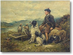 Картина Птицы и звери Шотландия