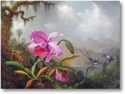 Купить картину Орхидеи и колибри