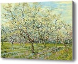 Картина Белый сад