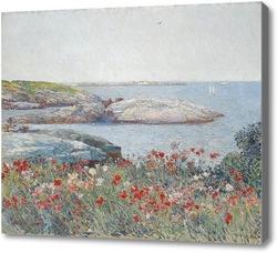 Картина Поле маков у моря