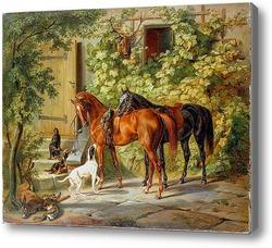 Купить картину Лошади у крыльца