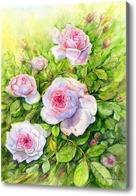 Картина Розовый куст