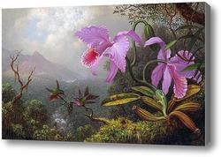 Картина Две колибри на ветке рядом с двумя орхидеями