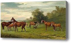 Картина Кобылы и жеребята