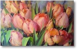 Картина Тюльпаны на солнце