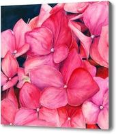 Картина Розовая гортензия