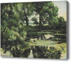 Картина Заросший пруд