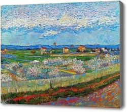 Картина Цветение персика в Тршебоне