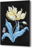 Картина Тюльпан и бабочки