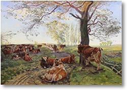 Картина Доильное место на животном дворе